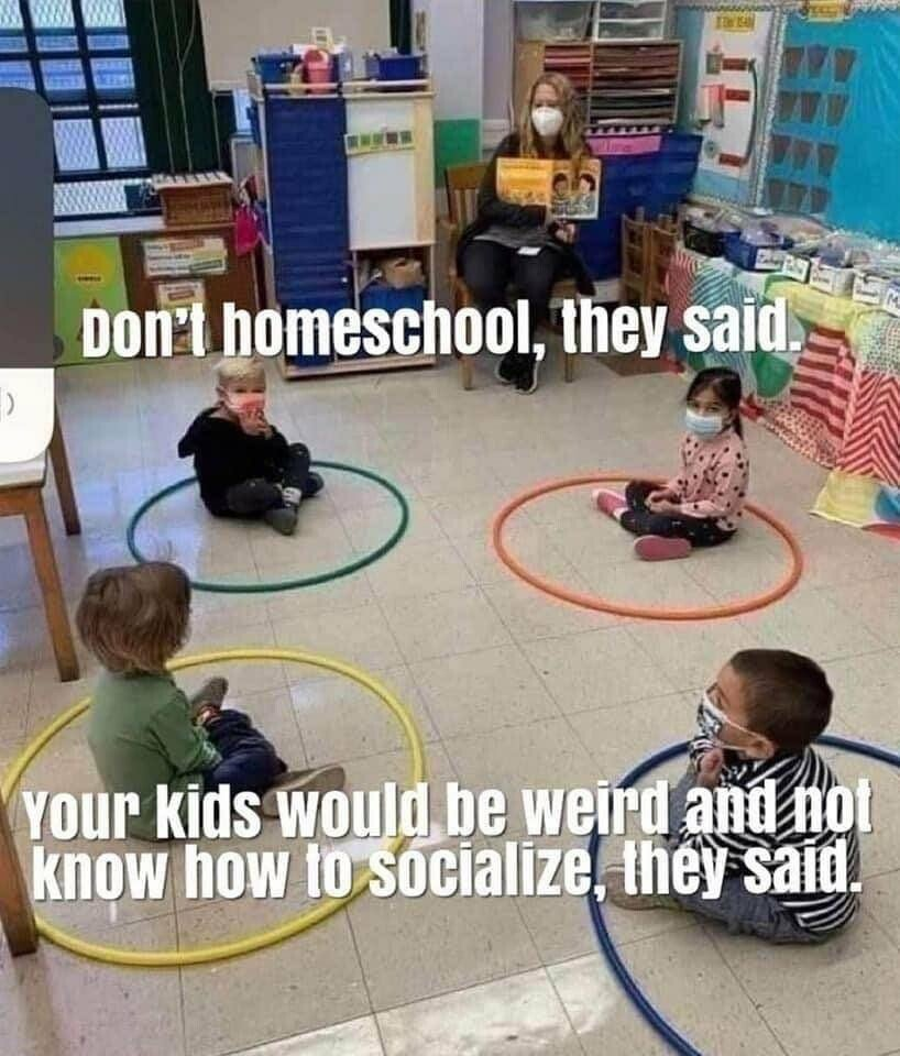 Don't Homeschool They Said . . .